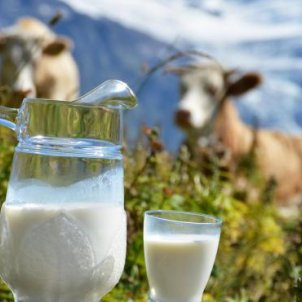 9 million tons of milk have been produced in Ukraine